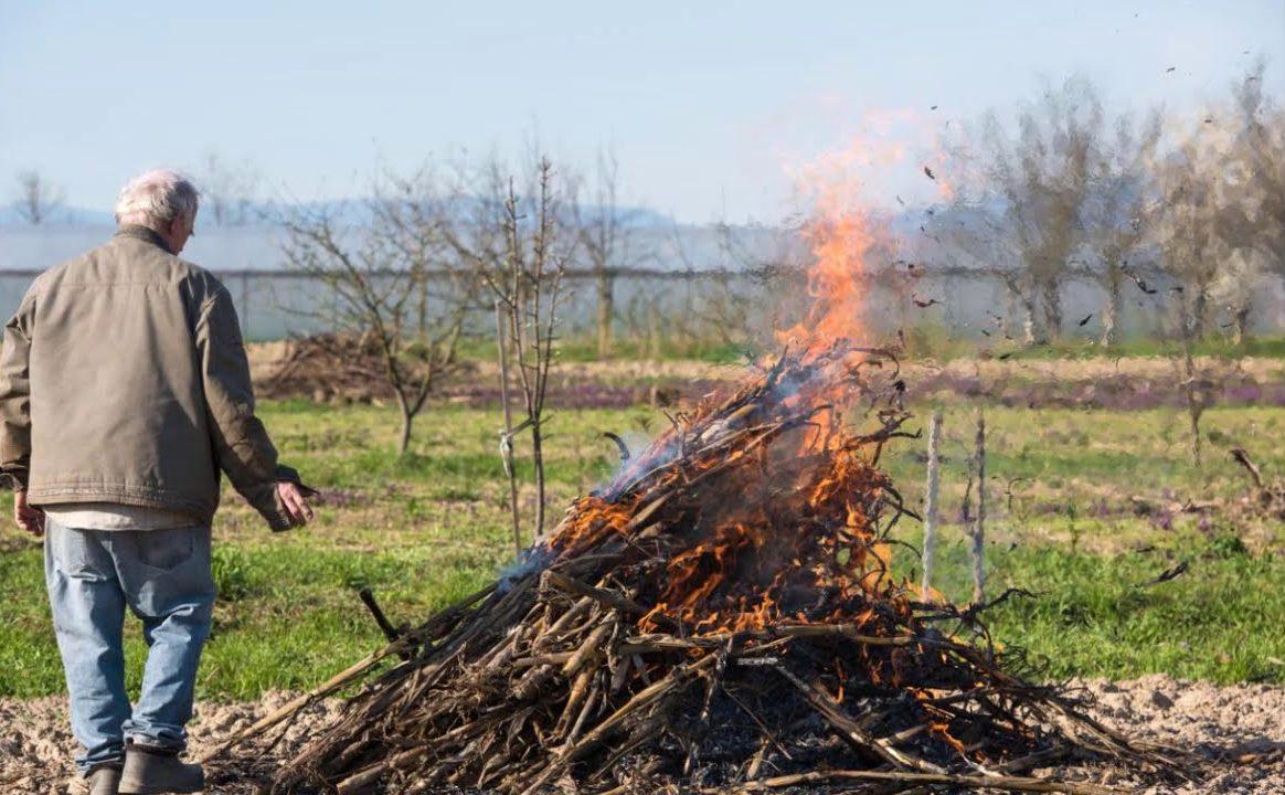 как правильно сжигать мусор в деревне